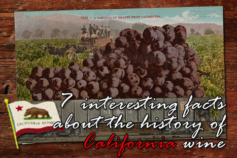 7 interesting facts about the history of California wine   All Things Wine and Food!   Scoop.it
