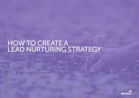 How to Create a Successful Lead Nurturing Strategy | lead generation | Scoop.it