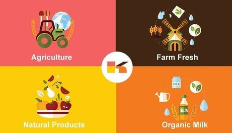 The Best And Right Process Of Buying Agricultural Food   Manufacturers Directory in India   Scoop.it