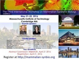 mSBW3 – The Third International Mammalian Synthetic Biology Workshop | SynBioFromLeukipposInstitute | Scoop.it