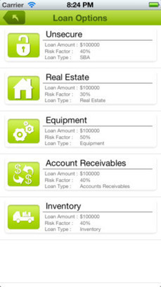 BizAnalyzer iPad and iPhone Loan Management App | Sharing social commerce benefits | Scoop.it