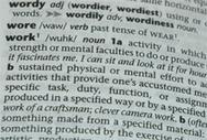 AI: New Words - Queereka | Post-Biological Identity | Scoop.it