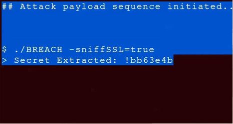 Gone in 30 seconds: New attack plucks secrets from HTTPS-protected pages | opexxx | Scoop.it