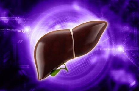 Know More About Liver Cancer: Diagnosis and Treatments | Cancer Treatment | Scoop.it