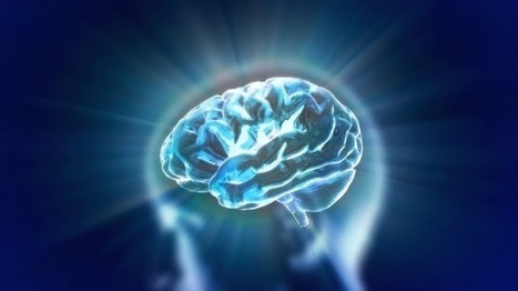The human brain is not as simple as we think - Raw Story | Neuromarketing Insights | Scoop.it