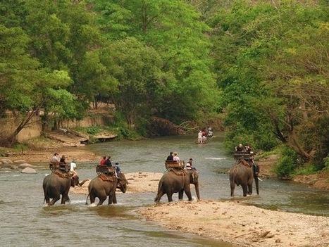 Kombireise Thailand: Günstige Nordthailand Rundreise | Love | Scoop.it
