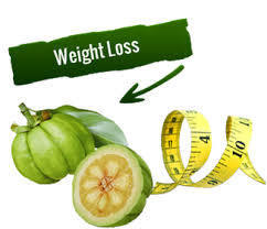 Newest weight dropping all-natural item with HCA | garcinia cambogia | Scoop.it
