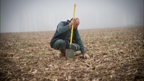 L'ambition française en agroécologie - Francetv info | exemple de veille à partir de mots clés | Scoop.it