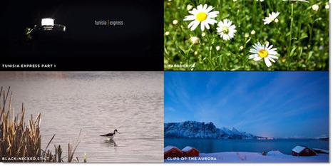 Mazwai, selección de videos HD para utilizar en proyectos personales o comerciales | Mundo | Scoop.it