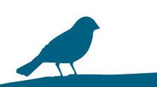 La reapertura de una mina de wolframio en Salamanca pone en peligro a especies amenazadas | SEO/BirdLife | Infraestructura Sostenible | Scoop.it