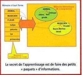 Une mémoire qui fontionne est une mémoire organisée | Nouvelles des TICE | Scoop.it
