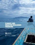 Climate and disaster resilience financing in small island developing states | Ufficio RIA 2.0 | Scoop.it