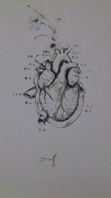 heart | Vulbus inc - Retrofuture | Scoop.it