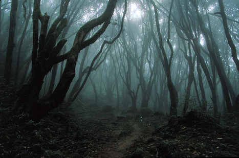 Top Haunted Places in the World | World Insider | World Insider Blog | Scoop.it