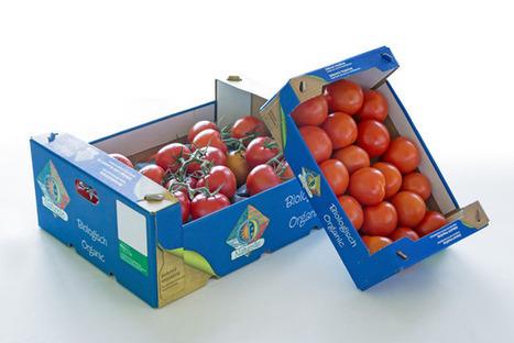 Tomatendozen van tomatenplant - Blokboek - Communication Nieuws | BlokBoek e-zine | Scoop.it