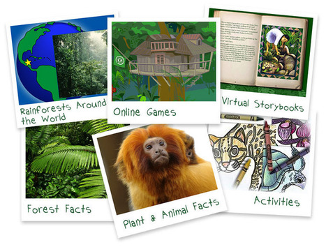 Kids' Corner | Rainforest Alliance | Rainforests: Year 6 | Scoop.it