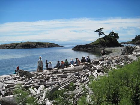 Ow.ly - image uploaded by @SJPTrust (San Juan Islands) | Geology | Scoop.it
