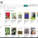 Boeken behouden is het doel van 1boek.nl   BlokBoek e-zine   Scoop.it
