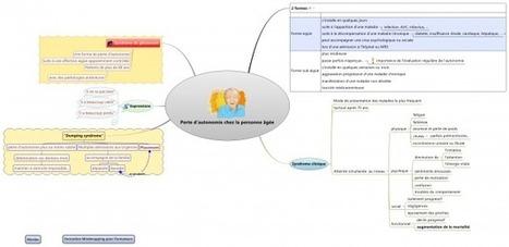Différentes structures dans une carte XMind : l'exemple d'un participant à la formation Mindmapping pourFormateurs | Cartes mentales, mind maps | Scoop.it