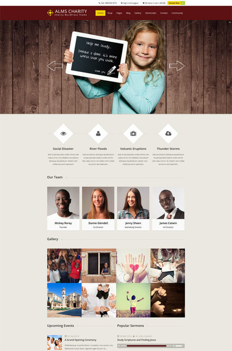 15 + Premium Non profit Wordpress Theme | ProjectGoodwill | Scoop.it