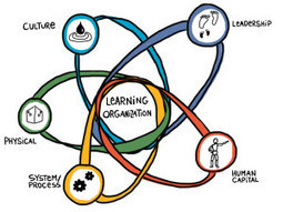 What is a Learning Organization and Why Do They Matter?   E-Learning Methodology   Scoop.it