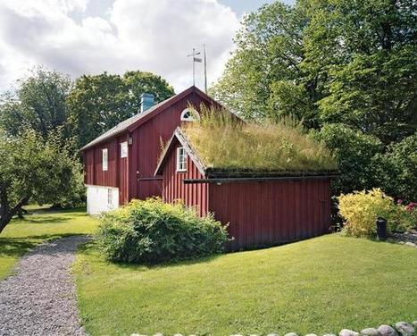 Swedish Snapshots | Garden Design | Eco-friendly roofs:  green, white, and garden | Scoop.it