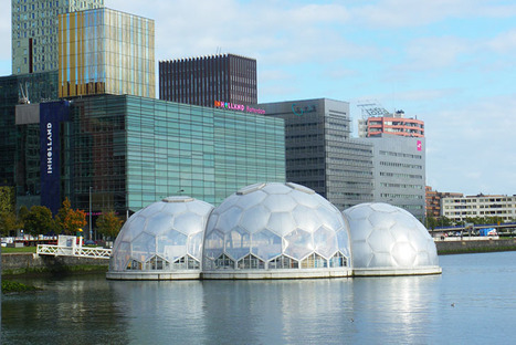 Rotterdam's Solar-Powered Floating Pavilion is an Experimental Climate-Proof Development | bancoideas | Scoop.it