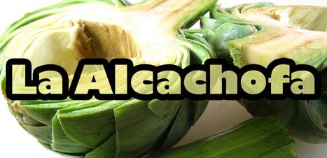 La Alcachofa: Aliada de la Salud y la Belleza - Vitafit | Mitos y realidades de la comida | Scoop.it