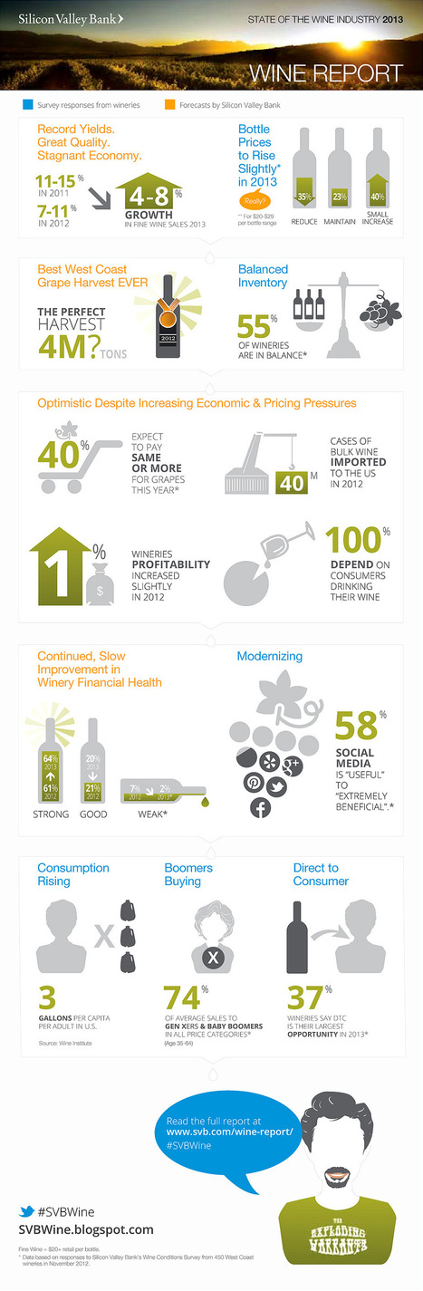 Silicon Valley Bank - 2013 Wine Report Infographic | Grande Passione | Scoop.it