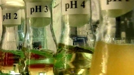 Bacterial growth and pH | National 5 Chemistry | Scoop.it