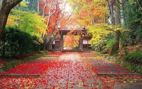 Autumn Landscapes from Japan | Nature | Scoop.it