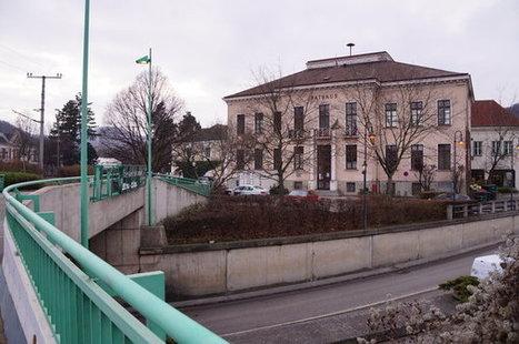 Große Pläne im neuen Jahr - Meinbezirk.at   Purkersdorfer   Scoop.it