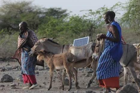 Toting panels on donkeys, Maasai women lead a solar revolution | Peer2Politics | Scoop.it