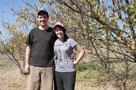 In Australia, Exchange Program Lets Chefs Loose on Farms | Food History & New Markets | Scoop.it