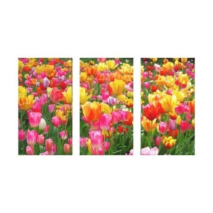Assorted Colorful Tulips Wrapped Canvas Gallery Wrap Canvas from Zazzle.com | Tulips | Scoop.it