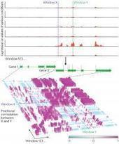 Making sense of molecular fragments | Plant Genomics | Scoop.it
