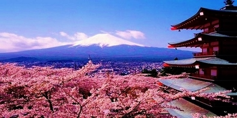 Teach English in Japan & Experience the Sakura Cherry Blossoms of Spring | Discover the World while teaching English abroad | Scoop.it