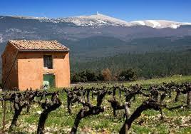 Avec les Vignerons du Mont Ventoux, faites-vous plaisir, surprenez vos sens! | Vos Clés de la Cave | Scoop.it