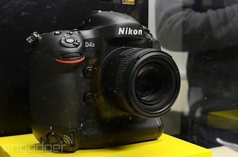 Nikon Exploring 4K Video for Future DSLRs « No Film School | PIXELS | Scoop.it
