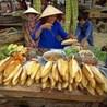 Expat Life in Hanoi