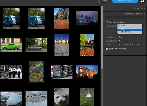 How to Decrease The Chances of Your Images Being Stolen By Adding Your Personal Details | Photography Online | Scoop.it
