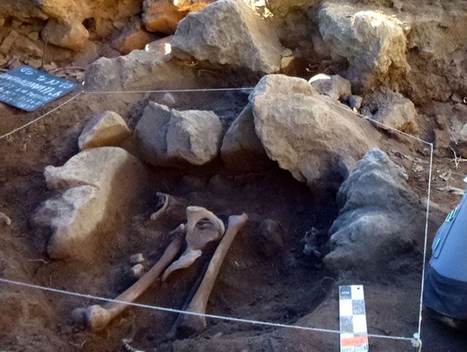 Archaeologists discover cemetery in Mexican city with clues to ancient ... - HeritageDaily | Collapse of Civilizations | Scoop.it
