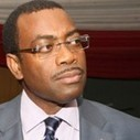 Agriculture should be seen as key business – Adesina - Nigeria Business News   AgKnowledge   Scoop.it