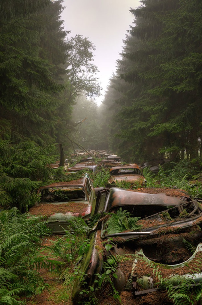 This Traffic Jam Was Stuck In Belgian Forest For 70 Years | Machinimania | Scoop.it