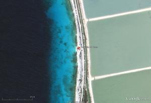 Bonaire, Underwater Archeology, Mushrooms, The Rock, LC Beach ...   ScubaObsessed   Scoop.it