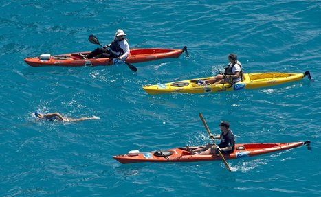 Sharks Absent, Swimmer, 64, Strokes From Cuba to Florida   Risk   Scoop.it