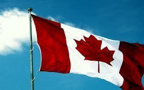 Becas para hacer doctorados en Canadá   Innovación y Empleo   Scoop.it