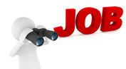 Find Best Job Guarantee Training Programs for IT in Delhi NCR | Job Guarantee Courses | Scoop.it
