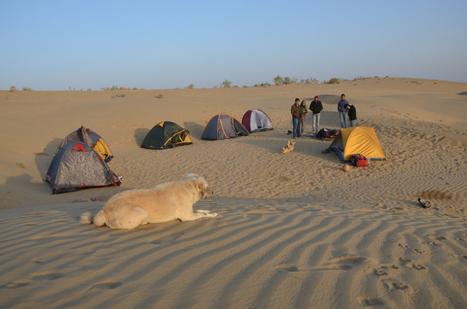 Indulge in some royal adventure in Rajasthan | Rajasthan Tourism | Scoop.it