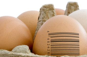 Introducción a la trazabilidad alimentaria (2) | Inocuidad de alimentos | Scoop.it